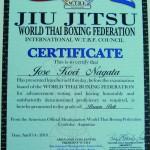 WTBF-Master-Jiu