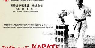 Palavra de Kancho Yoshikazu Matsushima em sua página web: http://www.kyokushin-matsushima.jp