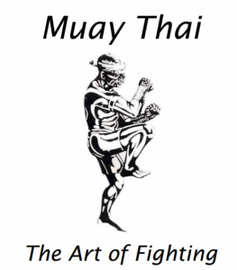 Capa-muay-thai-book