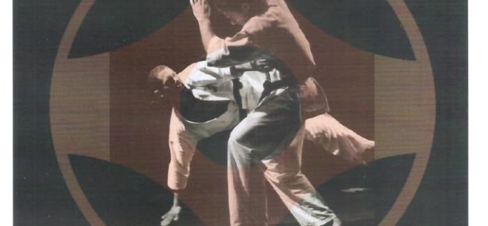 9º Campeonato Mineiro de Kyokushinkaikan Karate – 30/ABR/17 – Resultados