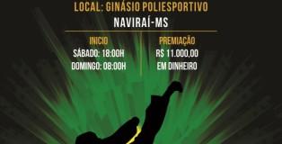 CAMPEONATO BRASILEIRO - CARTAZ 2